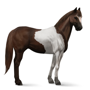 Image Paint Horse Liver Chestnut Tobiano Png Howrse Wiki