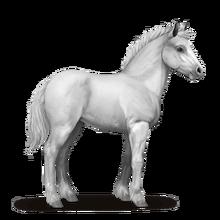 Howrse Shire foal