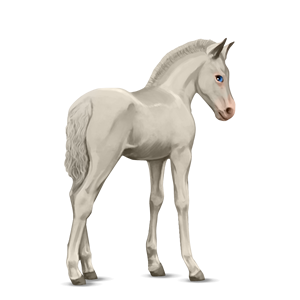 Fil:Akhal Teke Foal - Cremello.png