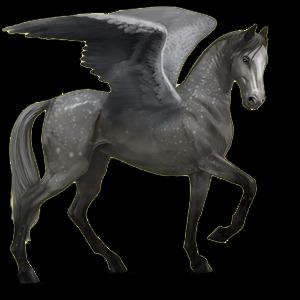 Fil:Akhal Teke Pegasus - Dapple Gray.png