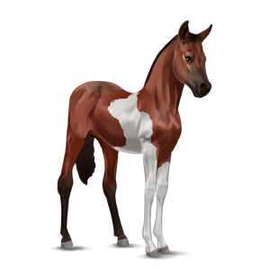 File:Paint Horse Foal - Cherry Bay Tobiano.png