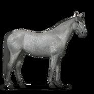 Mustang Apfelschimmel