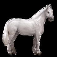 Massives Sportpferd Hellgrau Altes Design