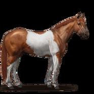 Paint Horse Fuchs mit Tobiano-Scheckung