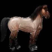 Mustang Roan Alt