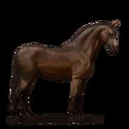 Andalusier Pferd Dunkelbrauner