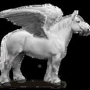 Percheron Schimmel Pegasus