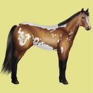 Paint Horse Alte Grafik 4