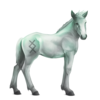 Greyfell 10 Fohlen