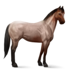 Quarter Horse.Roan.Altes Design