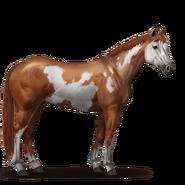 Paint Horse Overo-Fuchsschecke