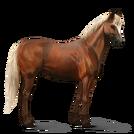 Quarter Horse.Fuchs mit heller Mähne.Altes Design