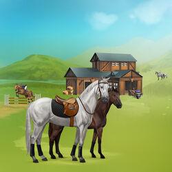 Pferde Howrse Reitzentrum