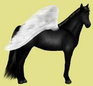 Don Pferd Rappe Alte Grafik Pegasus