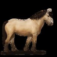 Neufundland Pony Falbe
