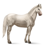 Quarter Horse.Cremello.Altes Design