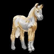 Paint Horse Palomino mit Overo-Scheckung Fohlen