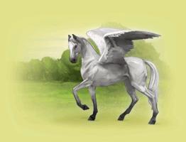 Pegasuskonto