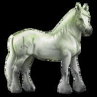Greyfell 8