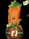 Marketing-plante-2017-graine-D-1-1-