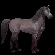 Mustang Mausgrau Alt