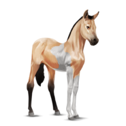 Paint Horse Isabell mit Tobiano-Scheckung Fohlen