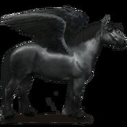 Percheron Rappe Pegasus
