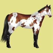 Paint Horse Alte Grafik 5