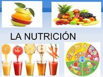 La-nutricin-humana-1-638