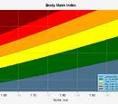 Body-Mass-Index berechnen