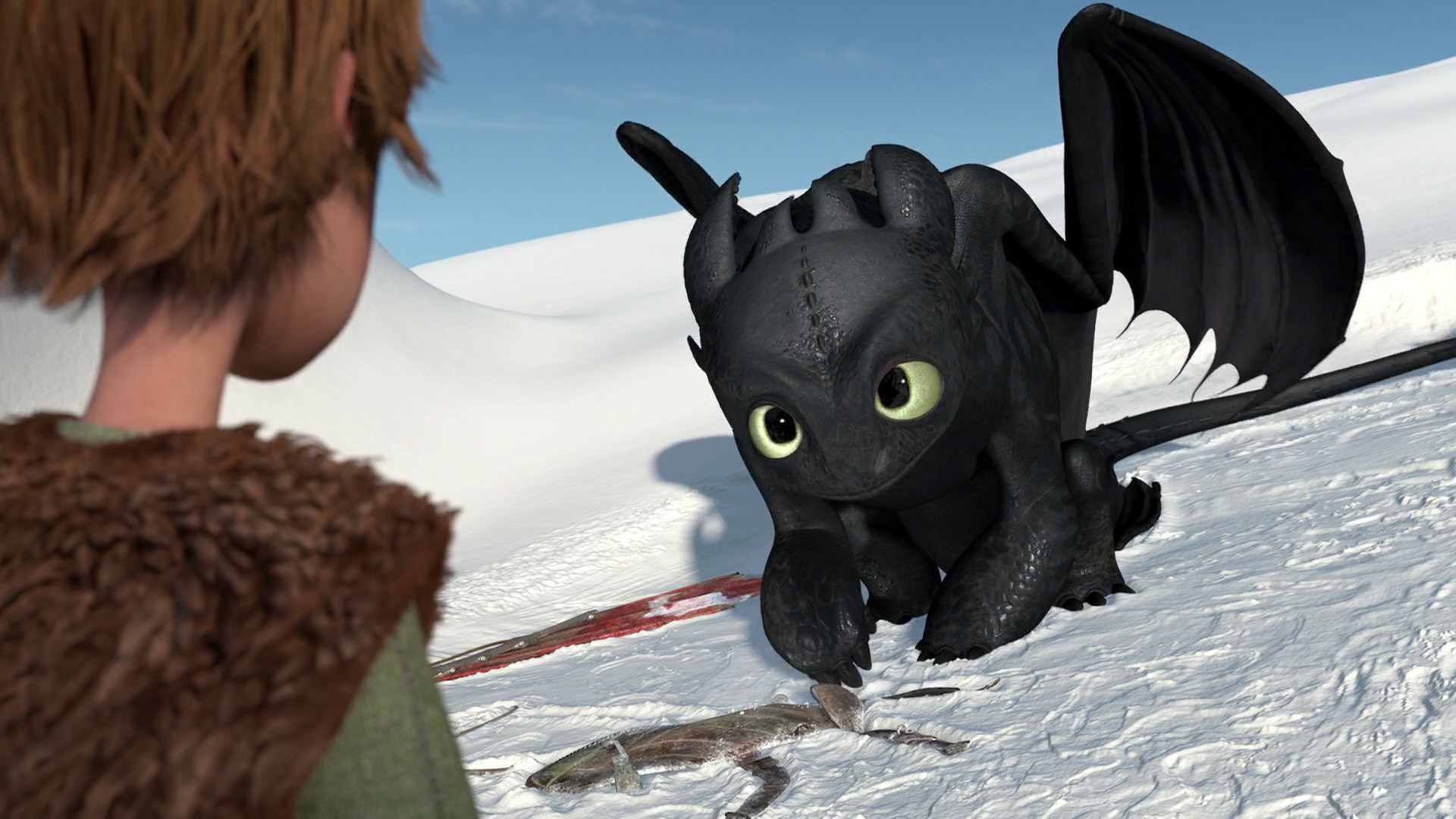 Gift of the night fury how to train your dragon wiki fandom gift of the night fury how to train your dragon wiki fandom powered by wikia ccuart Image collections