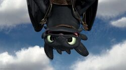 Gift of the night fury screencap toothless by sdk2k9-d5dsh8c