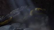 Cavern Crashe