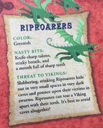 Riproarer5