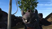 Toothless(32)