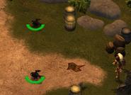 Dragon Tactics Hobgobblers 5