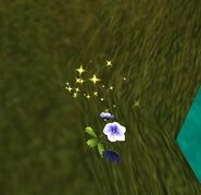 SOD-FillTheWorldWithFlowersQuest1