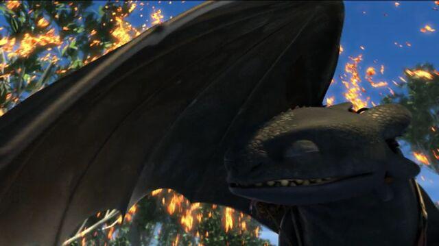 File:Toothless(86).jpg