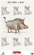 Boar concepts