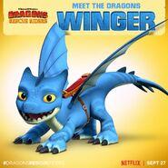 Winger Promo
