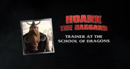 Hoark the Haggard