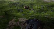 Blue Oleander Fields