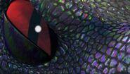 HA - Closeup of a slinkwing's eye