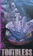 HTTYD-LSbook-Toothless2