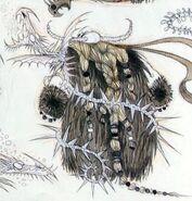 Unknown dragon3