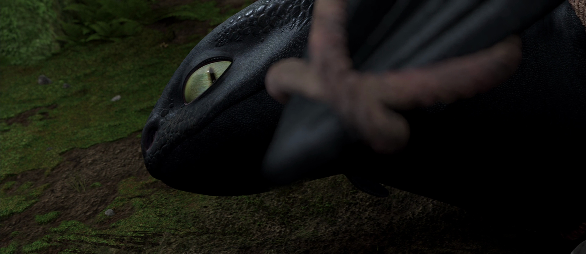 how to train your dragon wikia