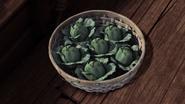Cabbage 5