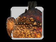 4. Eruptodon