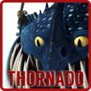 ThornadoPortal