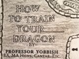 How to Train Your Dragon (fictional)